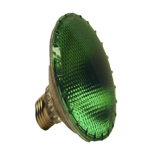 Dark Night Agrolite ampoule de 100W