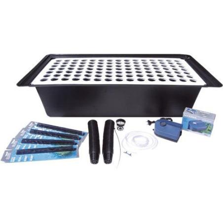 Esquejero Hidro 105 alvéolos + accesorios de oxigenación