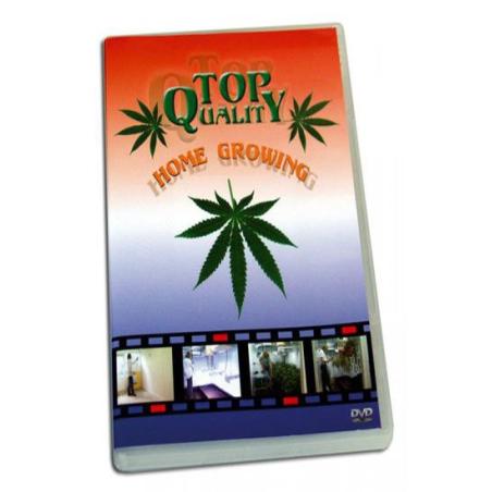 DVD Top Quality