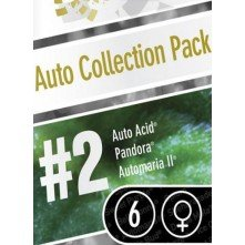 Auto Collection Pack 2