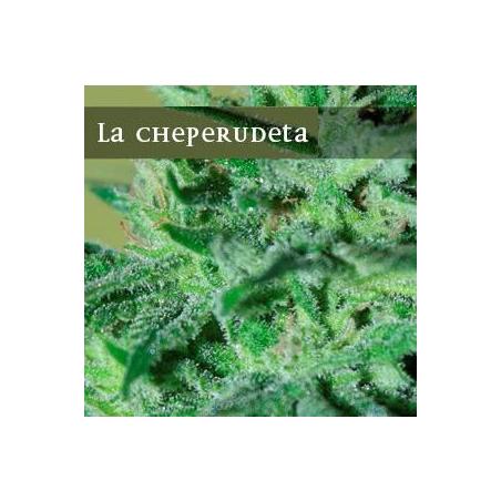 La Cheperudeta