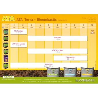 Micro Kit Ata Terra