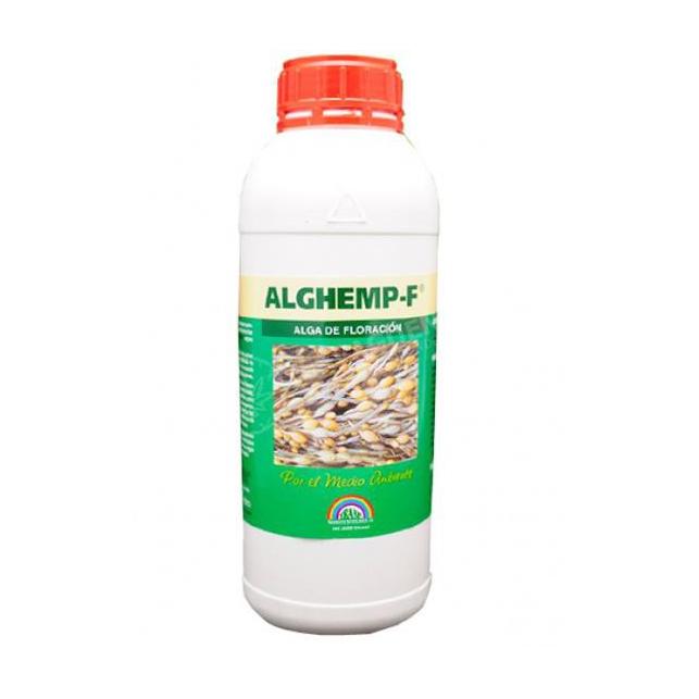 AlgHemp Floración