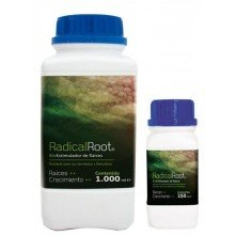 Radical Root (Croissance)