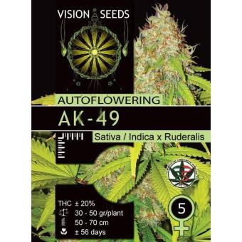 AK 49 Auto