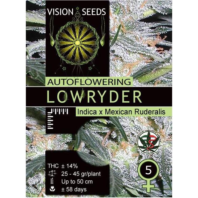 Lowryder Auto 1