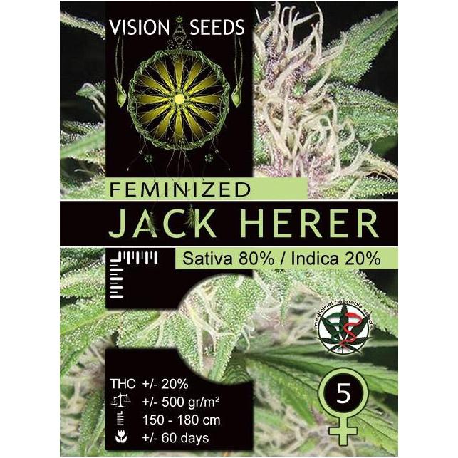 Jack Herer Vision Seeds 1