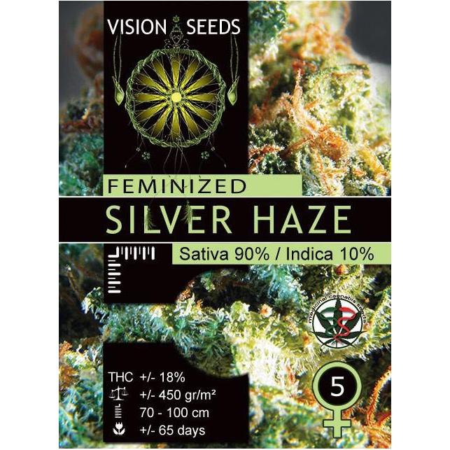 Silver Haze Vision Seeds 1