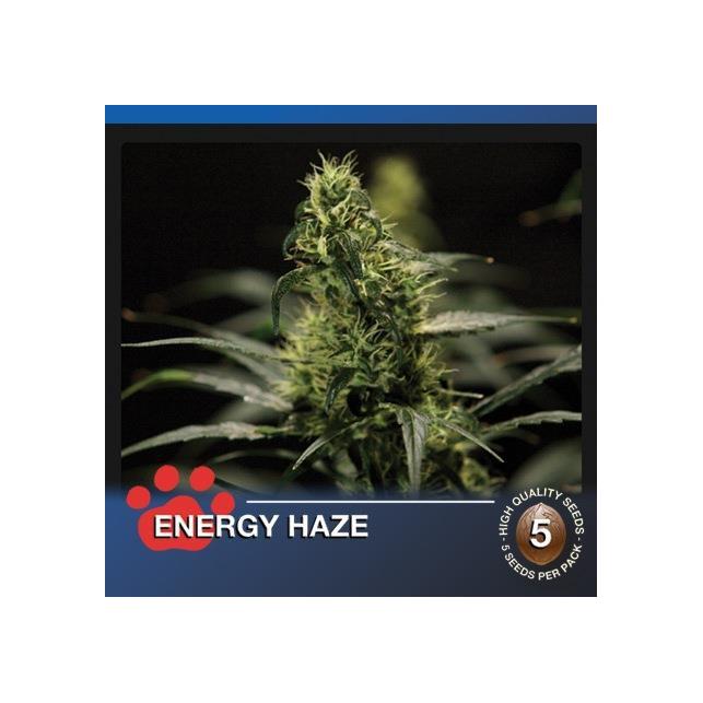 Energy Haze