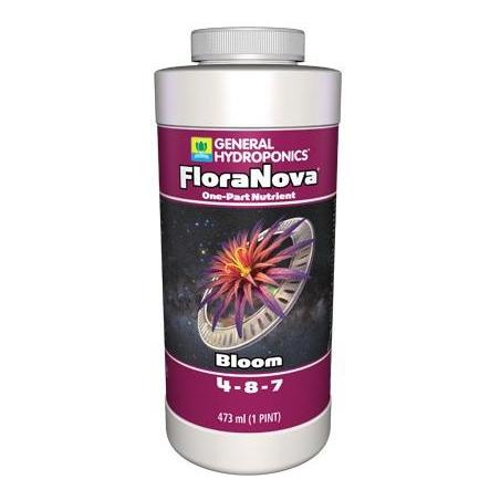 Floranova Bloom