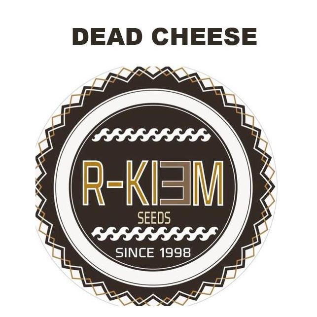 Dead Cheese