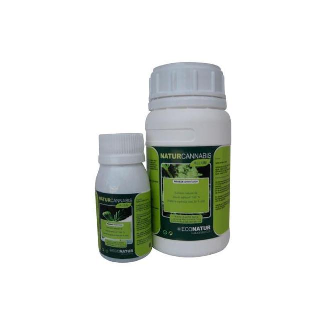 Naturscrop Allium