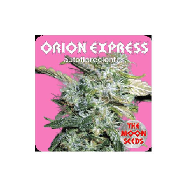 Orion Express Auto