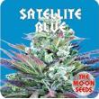 Satellite Blue