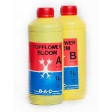 Top Flower Bloom B.A.C