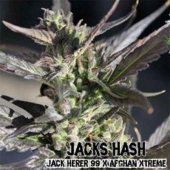 Jacks Hash
