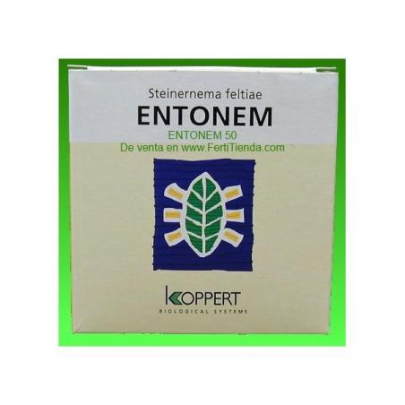 Entonem (Steinernema Feltiae) contra mosca del mantillo