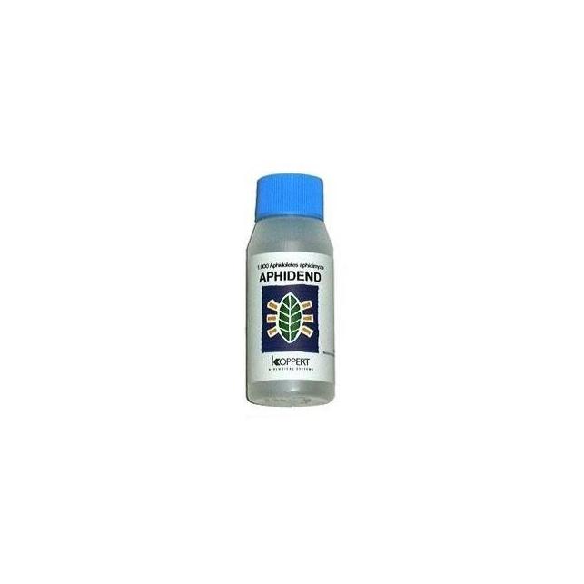 Aphidend 2000 - Aphidoletes aphidimyza (contra pulgon)
