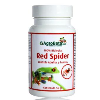 Red Spider Plagas y hongos