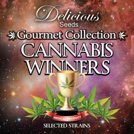 Cannabis Winners 1 Delicious Seeds