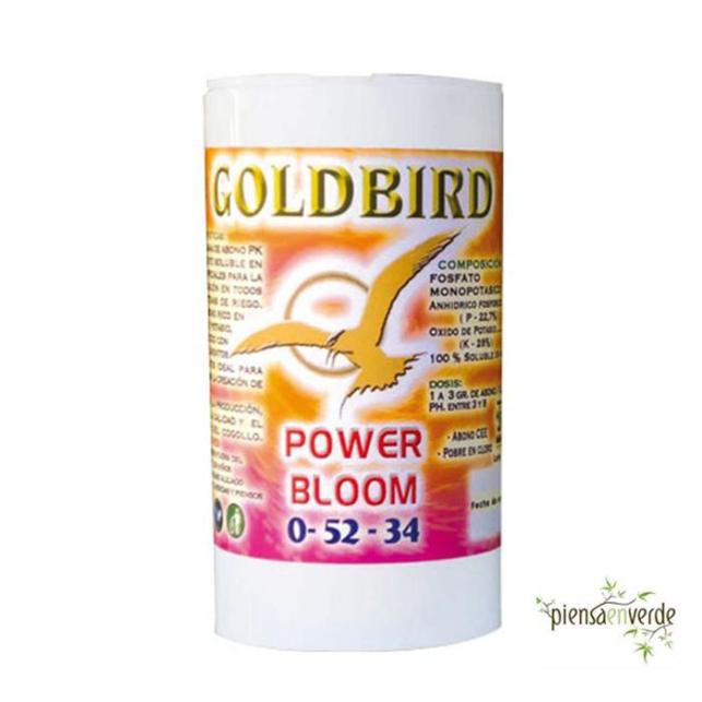 Bloom Goldbird