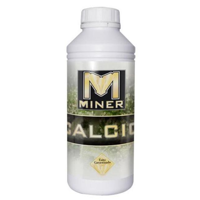 Calcio Miner