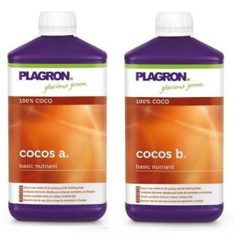 COCO A Y B PLAGRON