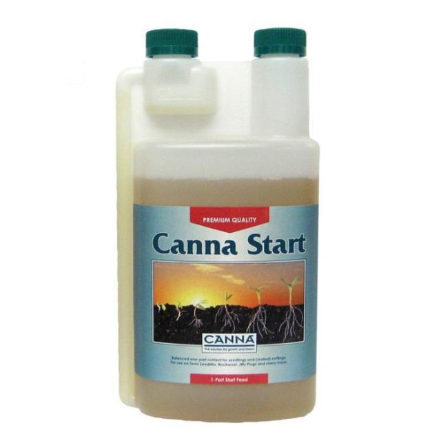 Canna Star