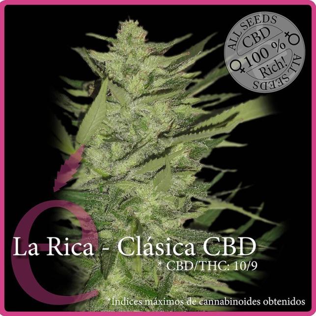 La Rica CBD