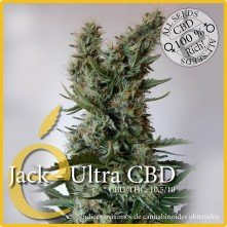 Jack Ultra CBD