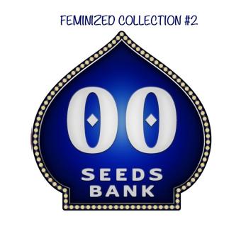 Colección feminizadas 2