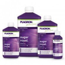 Sugar Royal