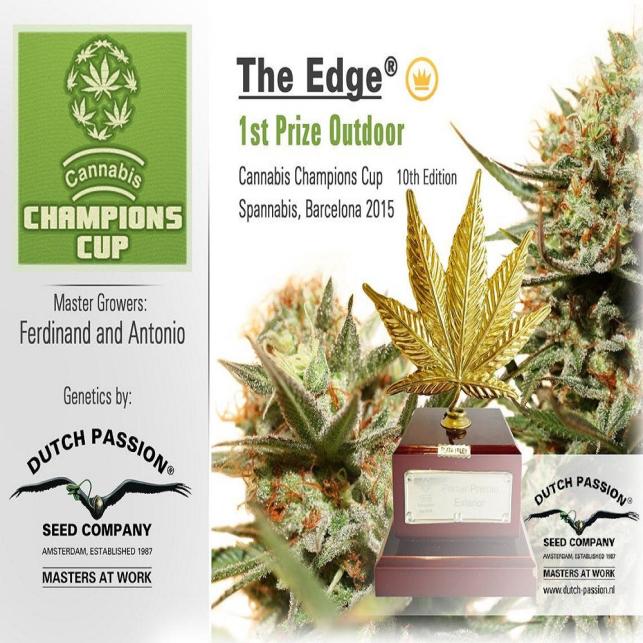 The Edge 3
