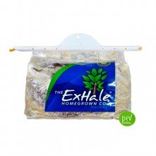 ExHale CO2 generation Bags