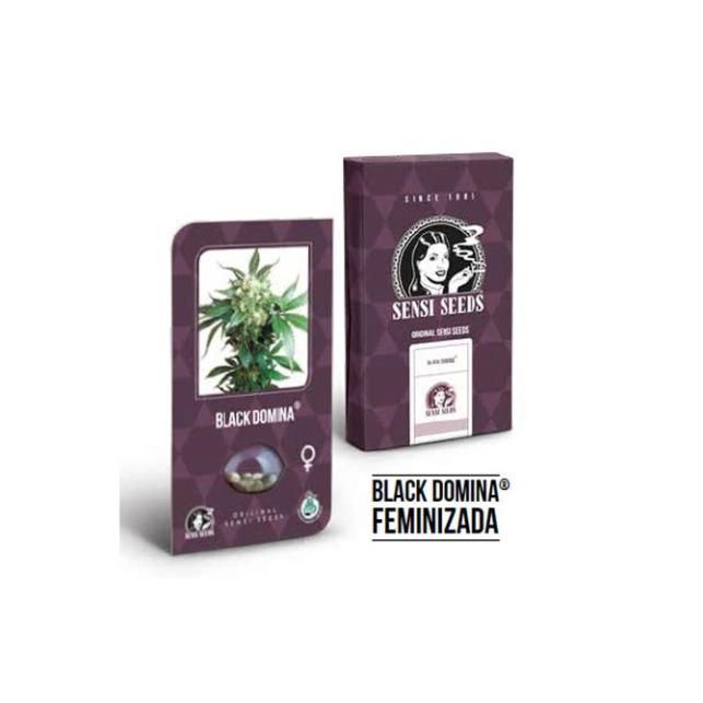 Black Domina® Feminized