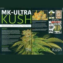 Caja MK Ultra Mind Control de TH Seeds