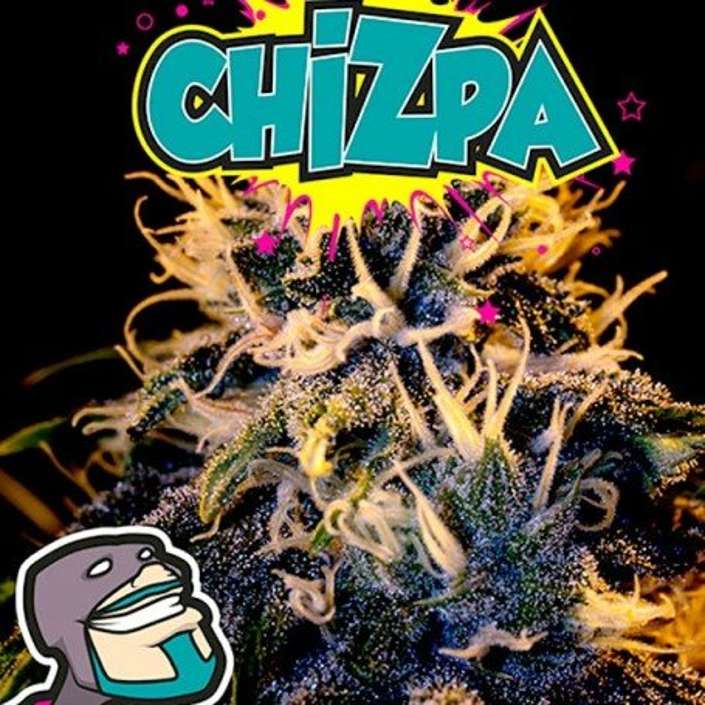 Chizpa - Positronics