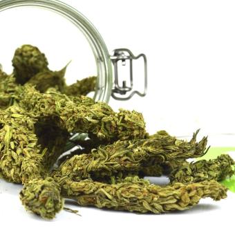 Martínez Skunk Hemp Premium Selection (Legal marijuana)