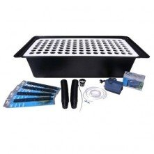 Hydroponic Cloning system with 36/105 alveolar tray