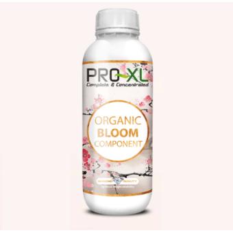 Bloom Component Organic