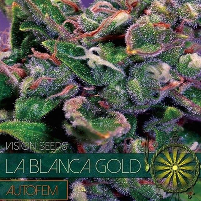 La Blanca Gold Auto