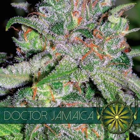 Doctor Jamaica
