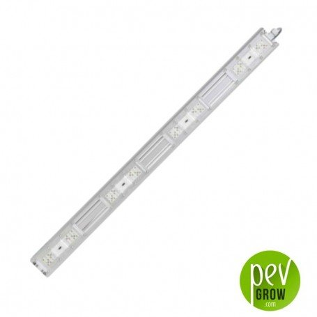 Led P4W Sanlight