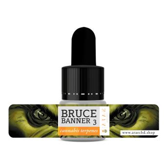 Bruce Banner 3 ARAE