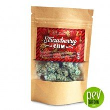 CBD Flores Swiss Made Strawberry Gum