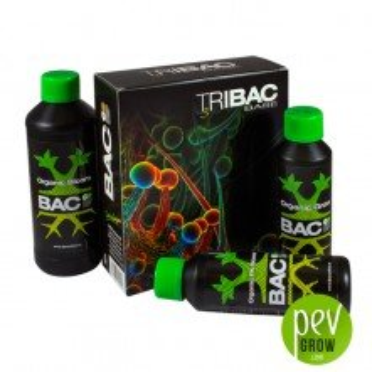 Tribac - BAC