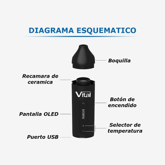 Vaporizador XVape Vital