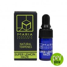 Maria Terpenes - Super Lemon Haze