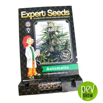 Lemon Haze Auto - Expert Seeds