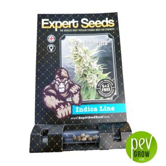 Gorilla Critical - Expert Seeds